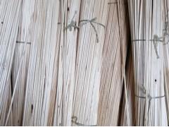 供应俄罗斯产直径8.0毫米桦木圆木棒
