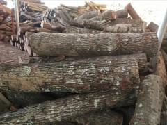 长期供应杂木原木