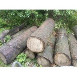 长期收购大小桐木