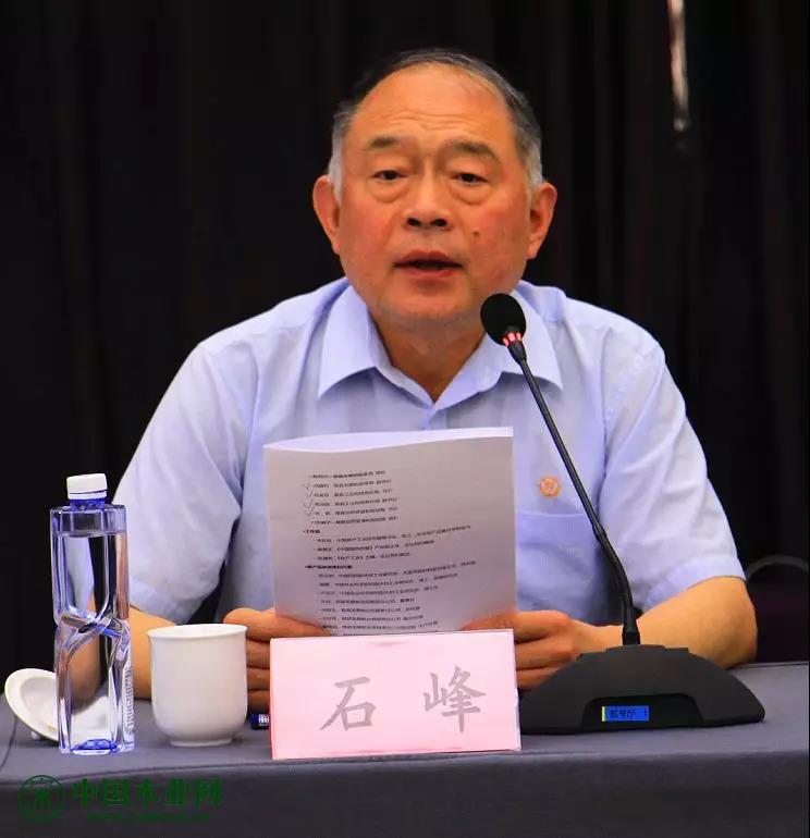 中国林产工业协会秘书长石峰主持会议