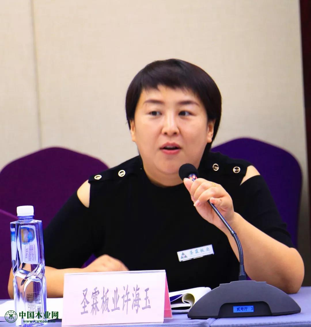 易县圣霖板业有限责任公司许海玉总经理发言