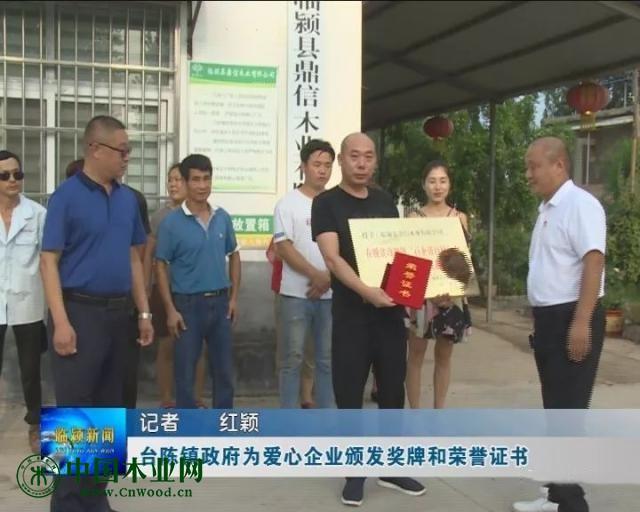 台陈镇政府为爱心企业颁发奖牌和荣誉证书