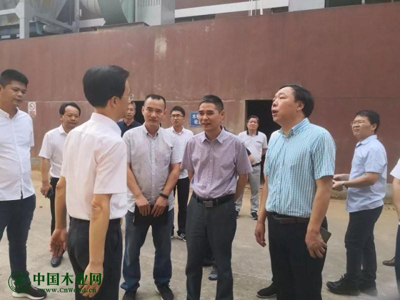 江山市委副书记及市长到金凯慰问并就安全进行督导