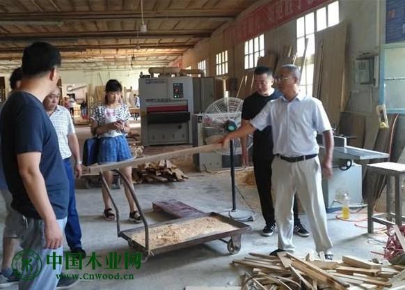 黄山市监管局调研木材企业松材线虫病防控管理工作