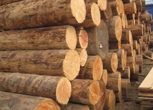 木业博览会展会范围