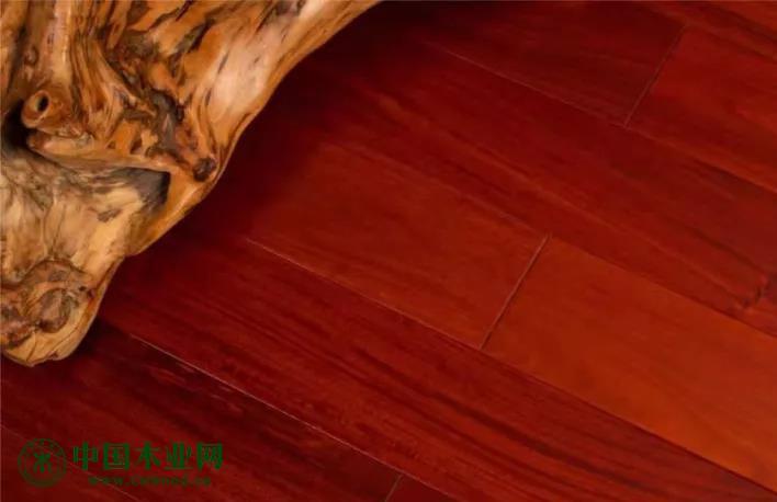 南美材必将成为木材市场的主流!