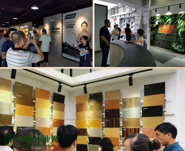 参观科技木展厅
