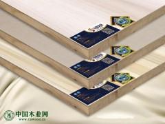 小熊贝贝香杉木芯生态板免漆板|生态板十大品牌|江苏生态板品牌
