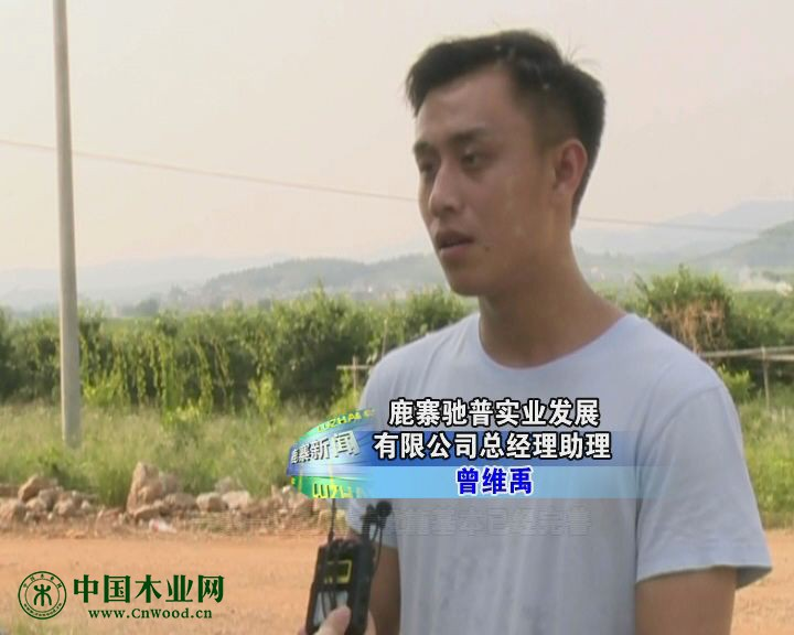 鹿寨驰普实业发展有限公司总经理助理 曾维禹
