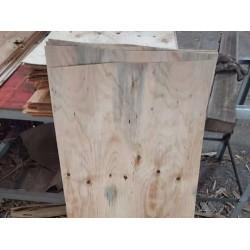 求购松、桉木单板