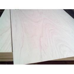 求购直径4.8、5.0的松木木芯
