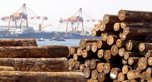 我国木材贸易体制特点及相关贸易政策动向