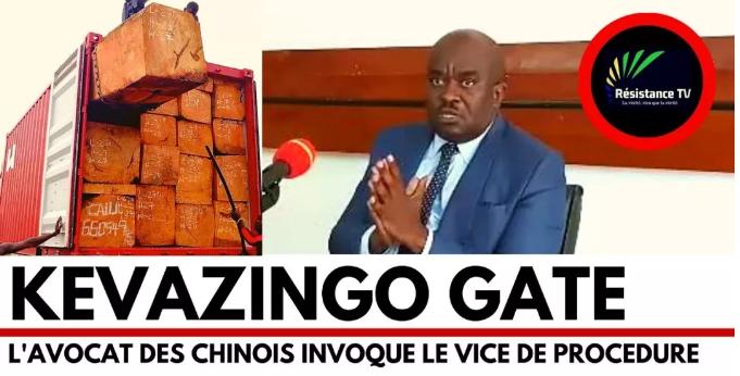 加蓬媒体报道的巴花门事件
