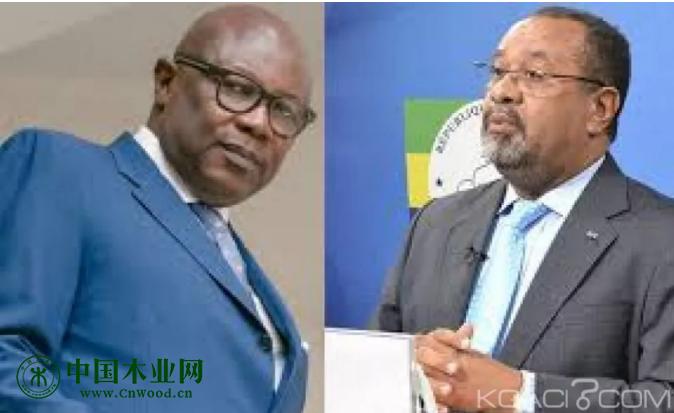 已被解职的加蓬前副总统皮埃尔·克莱维·马甘加·莫萨伏(左)和前林业与环境部长盖伊·贝尔特兰·马潘古(右)
