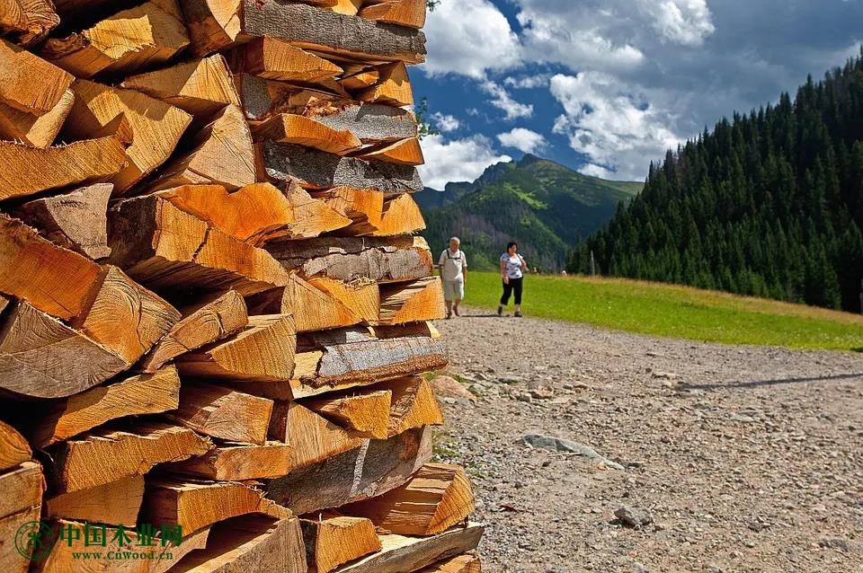 Canfor将继续削减木材产能!
