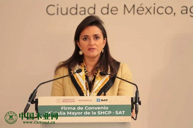 墨西哥税务总局(SAT)局长马加里塔·里奥斯—法哈特