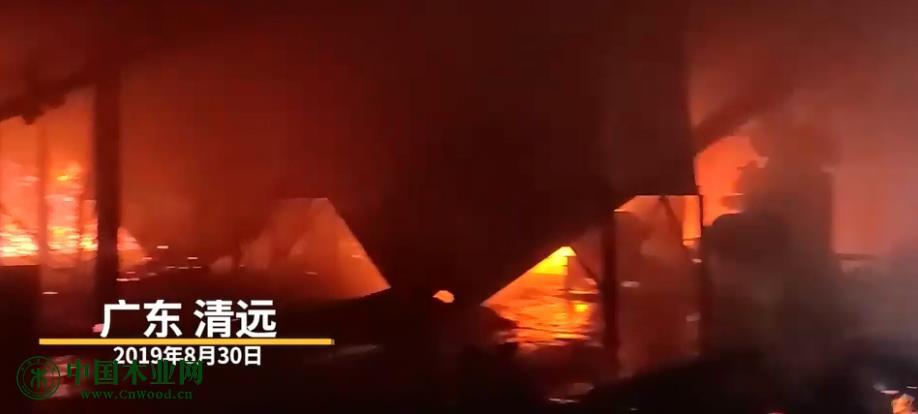 凌晨突发大火!清远一木材加工厂发生火灾 ,消防奋战八小时