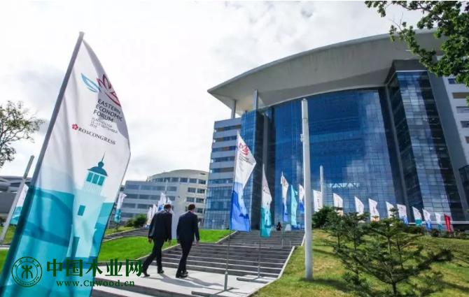 俄罗斯联邦林业署代表将参加第五届东方经济论坛框架内的林业发展圆桌会议