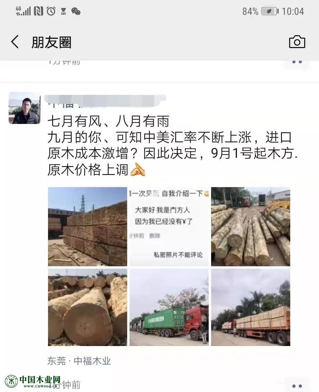 广东木材全线上涨,打响金九第一炮!