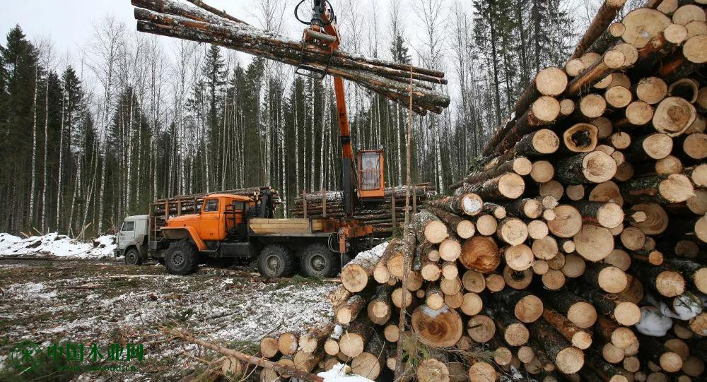 日本计划在俄建木材加工厂