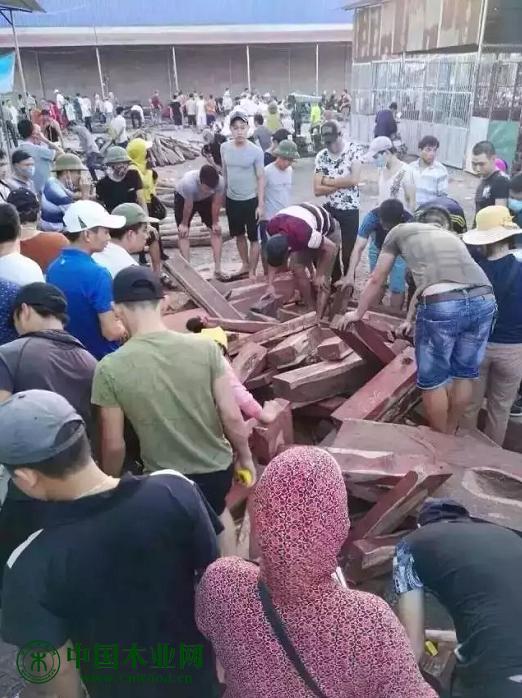 里三层外三层的买料人将装木料的车围得水泄不通。