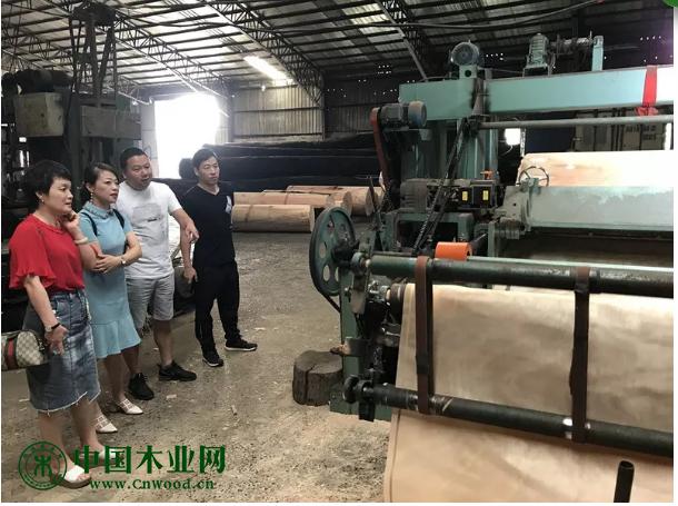 温州木材集团赴山东临沂人造板生产基地考察