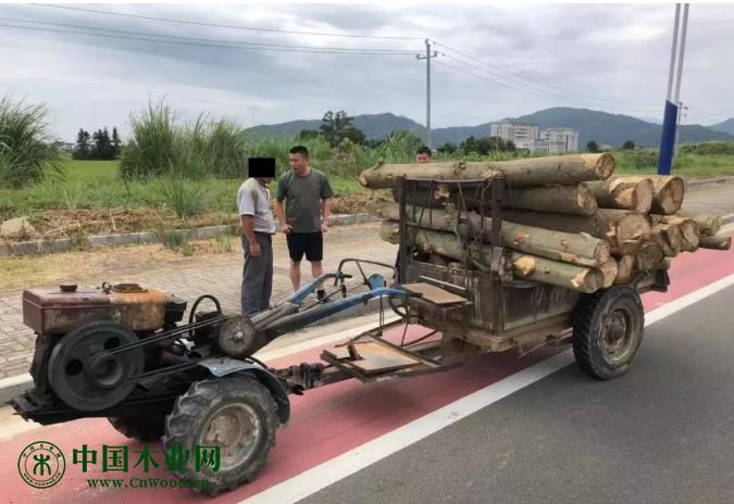 运输木材的车辆