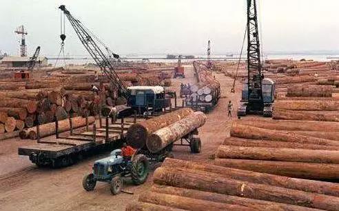 国际木材产品贸易特点浅析