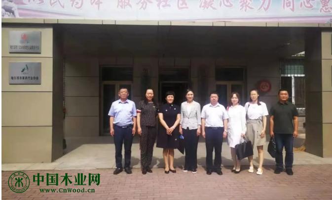 黑龙江省民政厅第四小组到哈尔滨家具商会开展社会组织专项督导检查工作