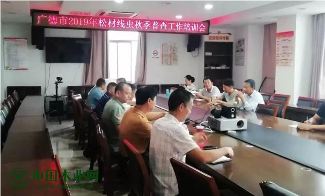 宣城广德市召开2019年松材线虫病秋季普查工作培训会