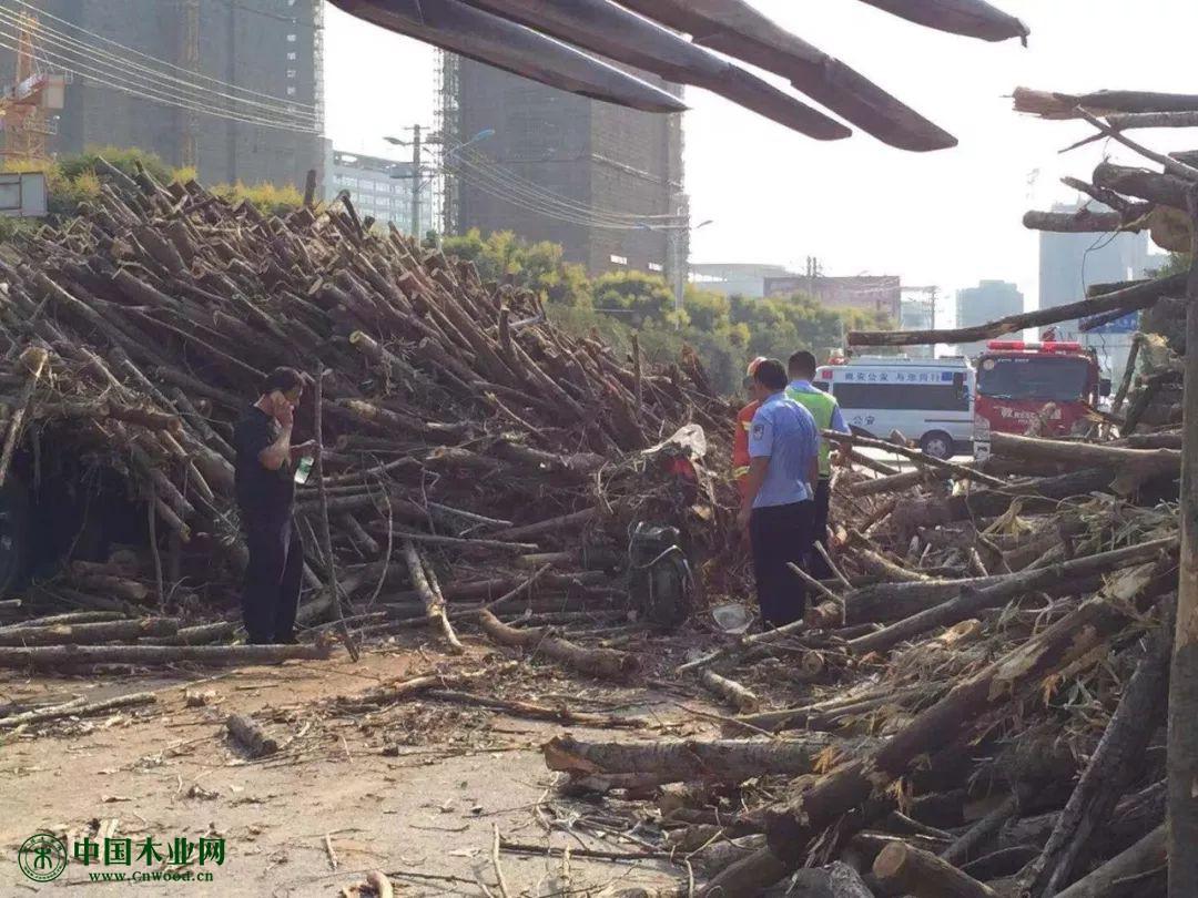 散落的木材