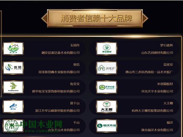 2019年度中国板材十大品牌网络评选活动榜单揭晓!