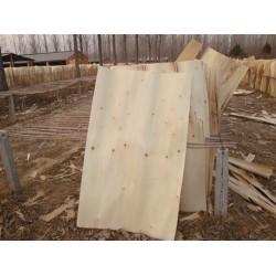 求购杨木单板