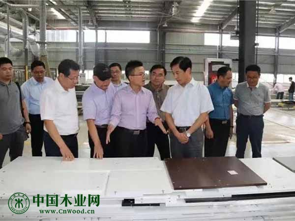 安徽省林业局牛向阳局长到六安市调研督导林业重点工作
