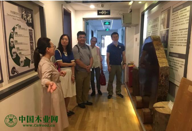 木工所刘波副研究员带领中国文化遗产研究院专家一行参观了我所木材标本馆