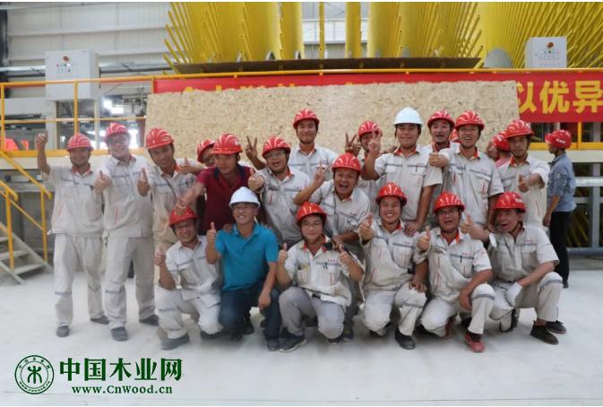 广西新威林年产30万m³可饰面定向刨花板项目首板下线
