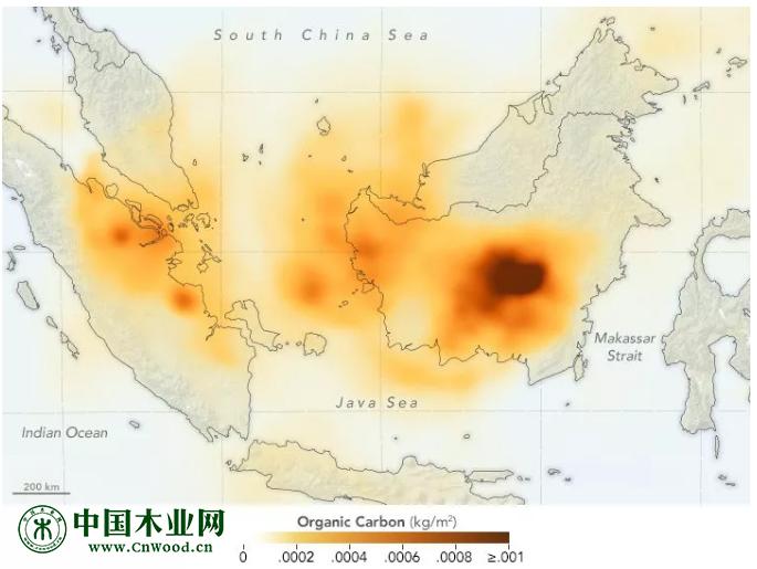 印尼的森林火灾