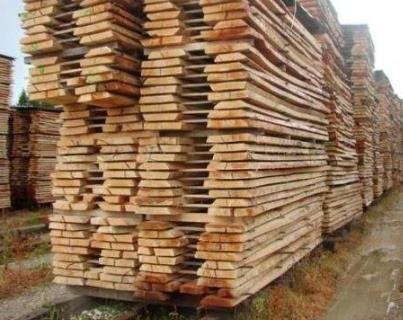 软木木材贸易在2019年上半年增长5%