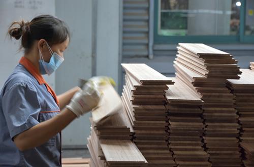 实地调查地板龙头企业:污染大户还是绿色产业?高端制造还是低端倾销?