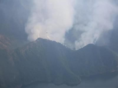 森林火灾现场