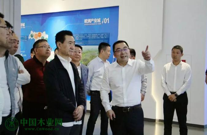万达集团董事长王健林来青白江建区调研