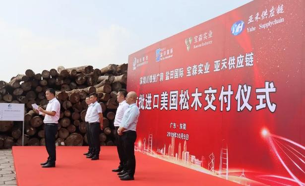 深圳川铁投广润首批进口木材交付仪式顺利举行