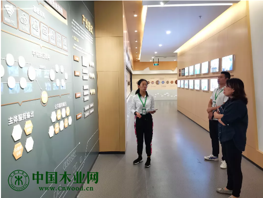 海蒂诗上海分公司华东大区经理冯立莅临嘉善木业综合体参观交流