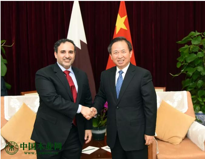 生态环境部部长会见卡塔尔市政与环境大臣