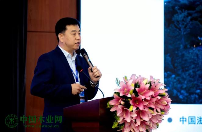 中国木材保护工业协会、中国木结构产业联盟常务副会长党文杰先生