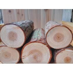求购松木打桩木