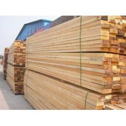 长年大量收购落叶松板材