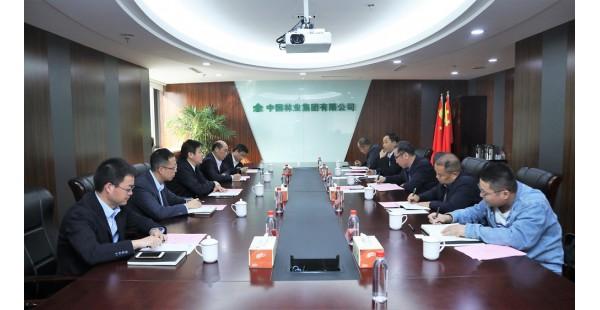 福海县县委副书记、县长杰恩斯汗到访中林集团