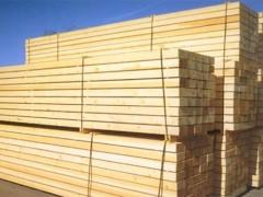 常年供应建筑模板