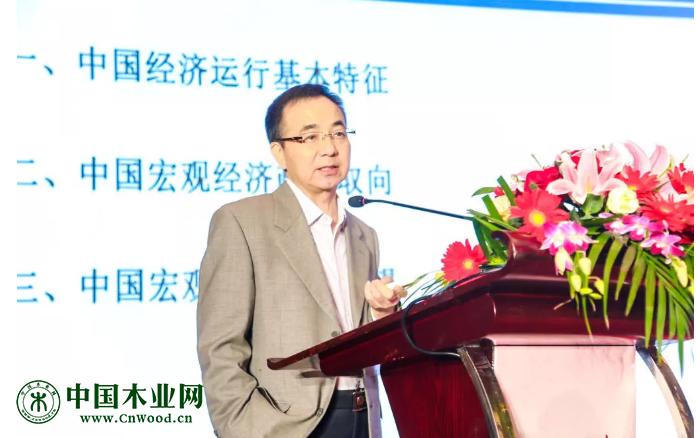 国家信息中心经济预测部副主任 王远鸿